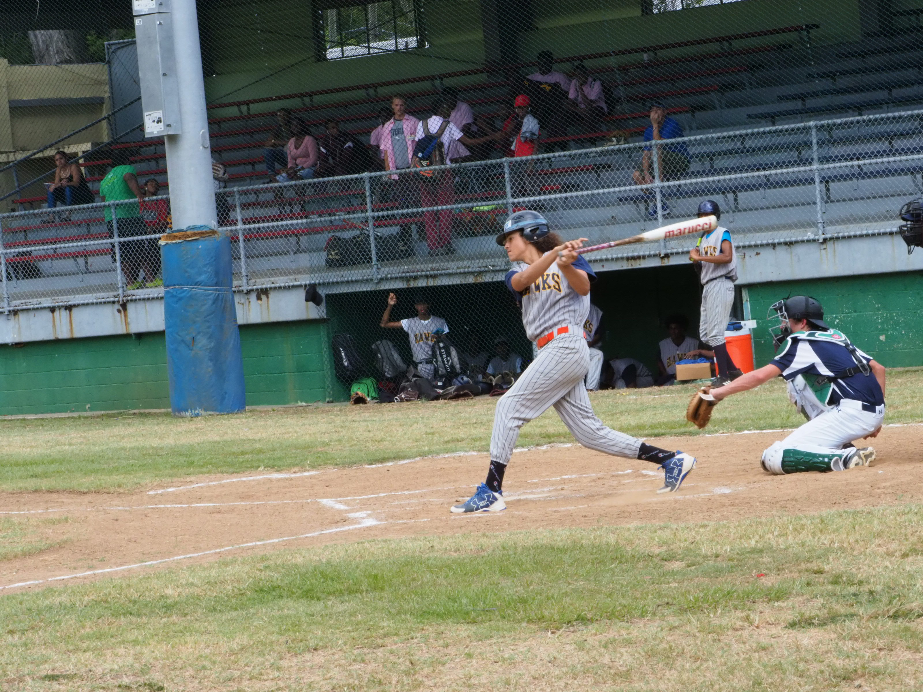 the Hawks take a swing at the Team Avenue Baseball's pitch.jpg